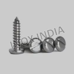 SS 316 Pan Slotted Self Tapping Screws