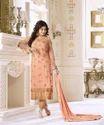 Heavy Designer Glossy Branded Salwar Suit