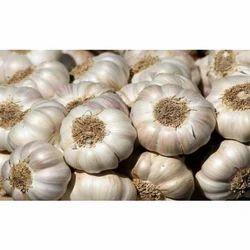 50 kg Garlic, Packaging: Plastic Bag