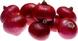 A Grade Maharashtra Red Onion, Packaging Size: 50 Kg, Onion Size Available: Medium