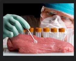 Food Diagnostics Service