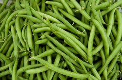 Green Beans, Packaging Size: 10 kg