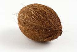 Semi Husked Matured Coconut Or Brown Coconut