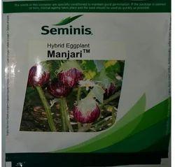 Seminis Brinjal Seed Manjari, Pack Size: 10 Gm