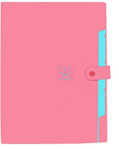 Plastic Colored File Folder For Office  Certificate Holders Expandable