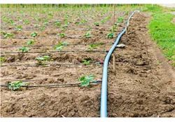 High Efficiency Agriculture Drip Irrigation Systems