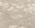 Perlato Royal Beige Marble