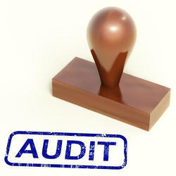 Consulting Firm Retainer Based Performance Audit Services