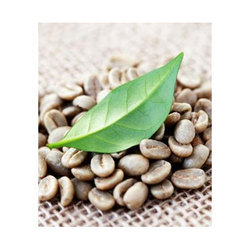 Green Coffee Bean Extract, Pack Size: 25 kg