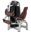 MT 213 Seated Leg Curl Machine