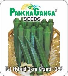 Green Hybrid Okra Seeds, Packaging Type: Pouch, Packaging Size: 10 Gm