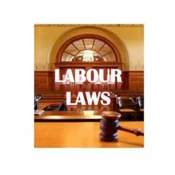 Consulting Firm Labour Laws Consultant Service