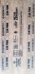 Century Club Prime 6 mm 710 BWP Plywood