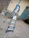 SKL Railing Ladder