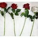 Elen Natural Artificial Rose Single Flower Stick, For Home/office Decoration