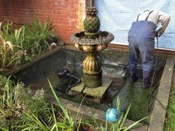Fish Pond Filter Cleaning Service