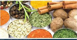 Indian Spices, Packaging: PP Bag