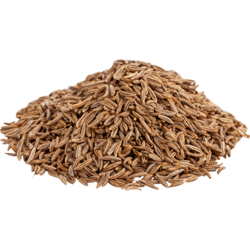 Caraway Seeds - Wholesale Price for Caraway Seeds in India