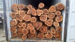 Colombia Long Length Logs
