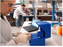 Microarray Analysis Support Services