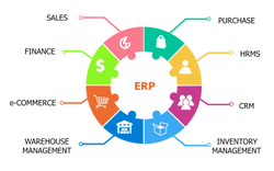 1 Week English Erp Solution