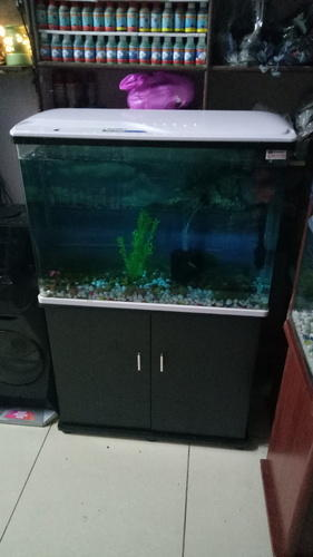 Sobo Chinese Aquarium With Top And Base Cabinet À¤— À¤² À¤¸ À¤…क À¤µ À¤° À¤¯à¤® À¤¸ Quality Fish Aquarium Faridabad Id 19536834791