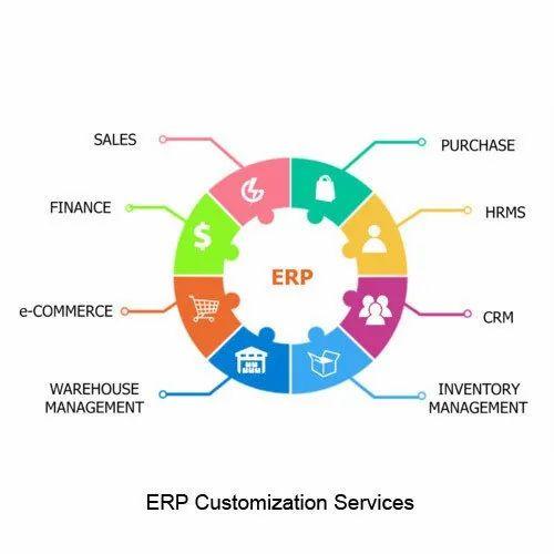 ERP Software Customization Service