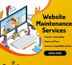 Online Website Maintenance Services, With 24*7 Support
