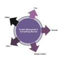 Project Consultancy Services