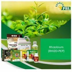Rhizobium (RHIZO-PEP)