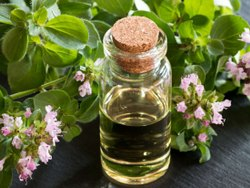 Essential Origanum Oil