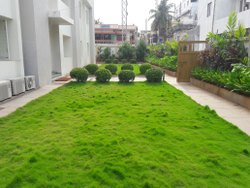 Lawn Production
