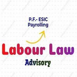 Labor Law Advisory & Compliance