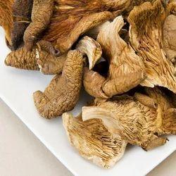 Dry Osyter Mushrooms