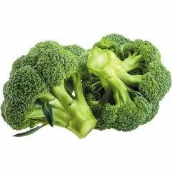 A Grade Green Organic Broccoli, Packaging Size: 20 Kg