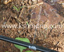 Drip Irrigation Pipe