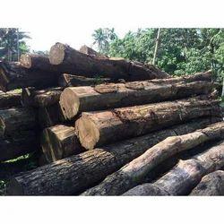 Thembavu Hardwood Logs