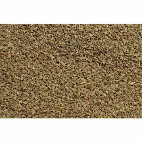 Ajwain Seeds, Packaging Size: 5 Kg