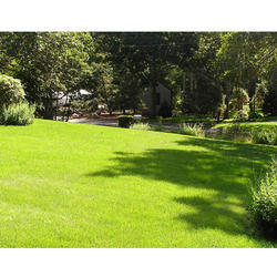 Lawns Designing Solutions