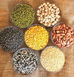 Food Grains, Pulses, Millets & Lentils