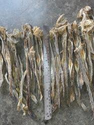 Dry Bombay Duck Bomil Dry Fish