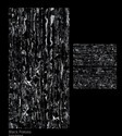 Black Potoro Digital Glazed Vitrified Tile