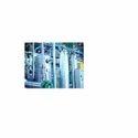 CO2 Gas Plants