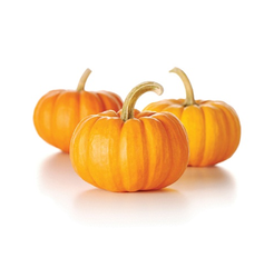 pumpkin-yellow-281kg-29-250x250.png