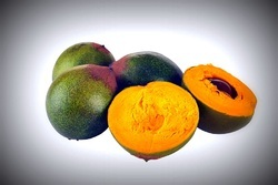 Lucuma Extract