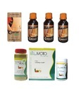 Herbal Ayurvedic Dietary Supplement