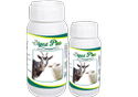 Goat Liver Supplement (Digest Plus)