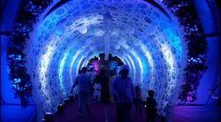 Party Wedding Designer Entry Gate
