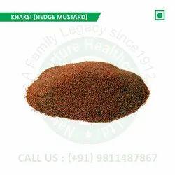 Khaksi (Hedge-Mustard, Malegaon Mansoora, Khubkala, Khubkalan, Khubba, Desert Mustard)