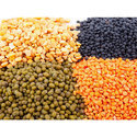 Hybrid Vegetable Seed, Pack Size: 5 Kg